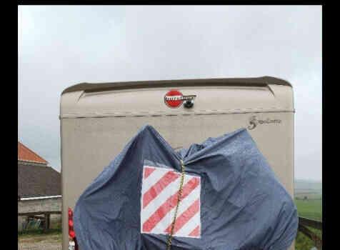 camping-car BURSTNER AVIANO I  695